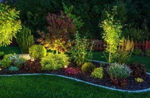 Adding lighting to your landscaping can improve your curb appeal and create a focal point in your yard.